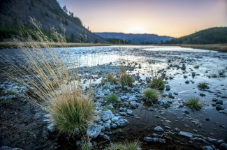 Madison River Yellowstone National Park