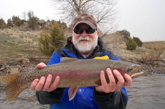 rainbow trout montana fly fishing guided trip
