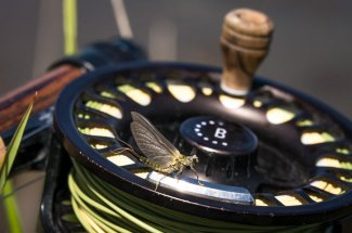 fly reel fly fishing hatch montana