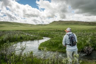 small stream creek fly fishing montana adventure