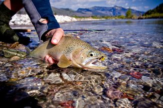 Montana Angler Float Fishing Trips