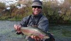Beaverhead River Rainbow Trout