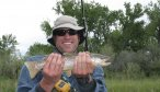 Fly Fishing the Bighorn River in Montana