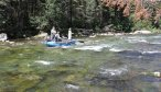 Montana Dry Fly Fishing