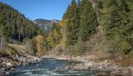 Dry Fly Fishing in Montana