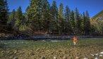 Montana Fall Fly Fishing Trips
