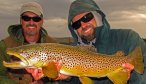 Montana Fly Fishing for Brown Trout