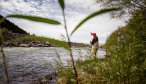 Montana Angler Fly Fishing Trips on the Madison River