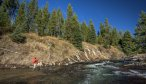 Montana Angler offers wade fishing trips in Yellowstone National Park