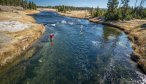 Yellowstone National Park Fly Fishing Trips
