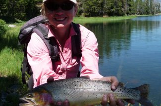 Yellowstone Park Cutthroat Trout