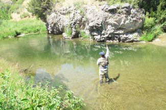 stream creek montana fly fishing guided trip adventure