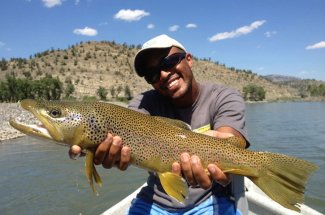 mature brown trout montana fly fishing angler guided trip