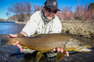 lunker brown trout catch and release fly fishing montana guided