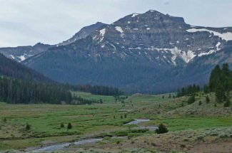Montana Angler offers guided trips on Slough Creek in Yellowstone National Park